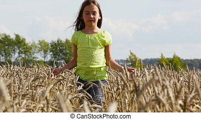 Wheat spikes - Preteen girl walking among ripe wheat spikes...