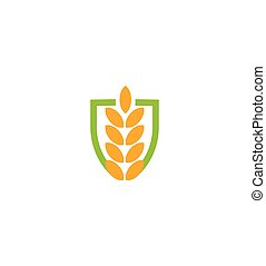 Wheat vector grain icon Isolated abstract orange color wheat ear hearldic logo. Nature element logotype. Agricultural organic product sign. Harvesting vector illustration