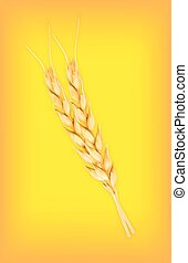 Wheat. Vector icon