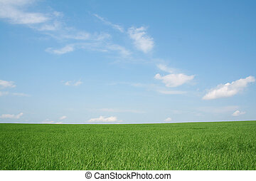 wheaten, 領域, 風景