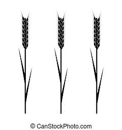 Wheaten Ear