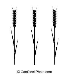 Wheaten Ear - Design element - wheaten ear. EPS10 vector.