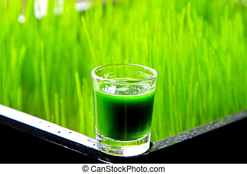 Glass of organic wheatgrass green juice with grass in background