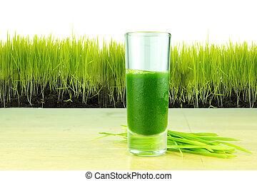 shot glass of wheatgrass with fresh cut wheat grass