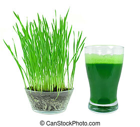 wheatgrass juice - Wheatgrass juice with sprouted wheat...
