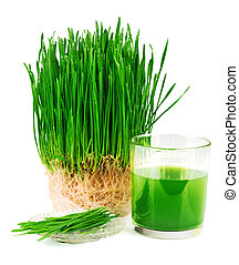 Wheatgrass juice with sprouted wheat on the plate isolated...