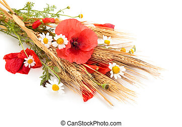 Wheats and poppies in bouquet. - Wheats, daisies and poppy...