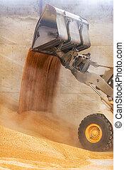Wheel loader close up, excavator loading sand at construction site.
