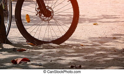 Wheel of a bicycle, parked in the shade, on the beach.