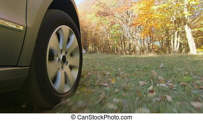 Wheel PoV Sunday drive on country road through a forest in autumn for pleasure