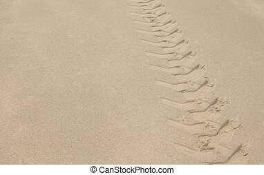 Wheel track in the sand