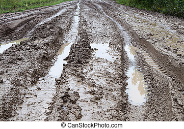Dirt road through the forest with mud and puddles