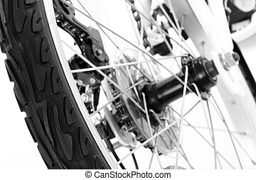 Wheel with tire of bicycle isolated on white background