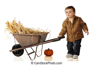 Wheelbarrow Baby