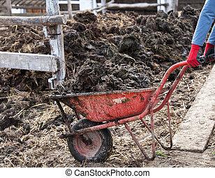 Wheelbarrow full of natural manure - Farmer pushing...