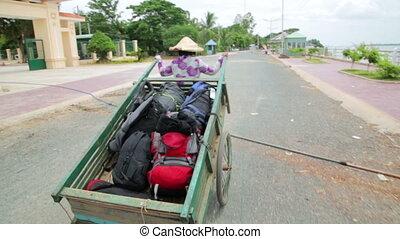 Wheelbarrow hand cart carrier porter in Vietnam