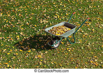 Wheelbarrow standing on the lawn