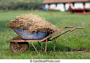 Wheelbarrow with natural cattle manure on the grass. Barn in background