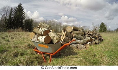 Wheelbarrow with firewood on spring field, time lapse -...