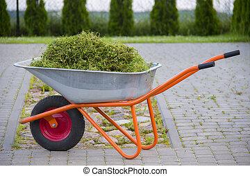 Wheelbarrow with garden waste on a lawn