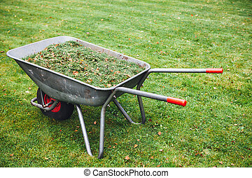 wheelbarrow with grass on green lawn background