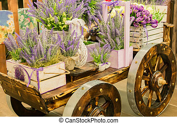 wheelbarrow with wooden boxes full of blooming lavender flowers. Decorative elements.