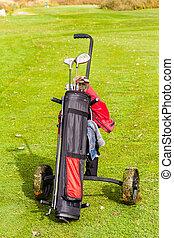 Wheeled golf club bag