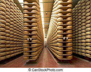 wheels of parmesan on the racks of a storehouse