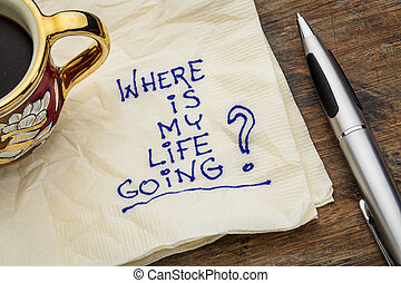 where is my life going - an essential question or searching ...