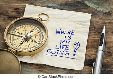 where is my life going - an essential question or searching...