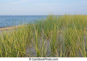 Where Lake meets Praire
