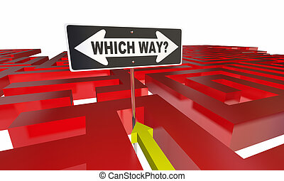 Which Way Choose Decide Path Maze 3d Illustration