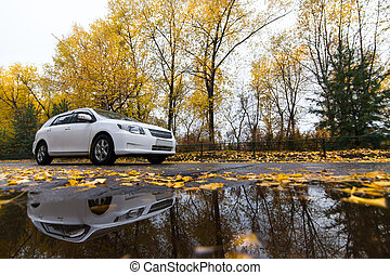 Whire car on autumn road