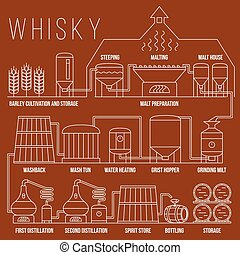 Whiskey production process vector infographic template