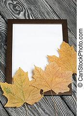 white., ブランク, frame., 写真, 黒, かえで, 松, 葉, マージン, ペイントされた, image., ブラシをかけられる, 板, 乾かされた