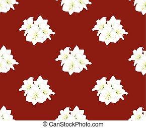 White Amaryllis on Red Background. Vector Illustration.