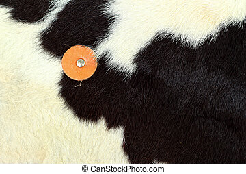 white and black background cow fur.