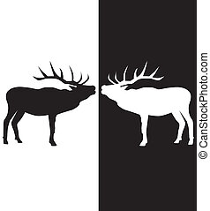 vector white and black deer