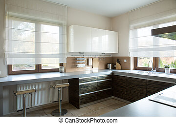 White and brown kitchen interior