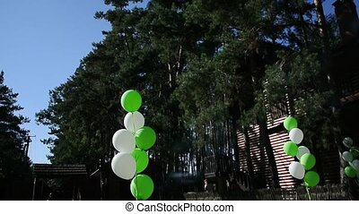 White and green balloons on a holiday in the forest.