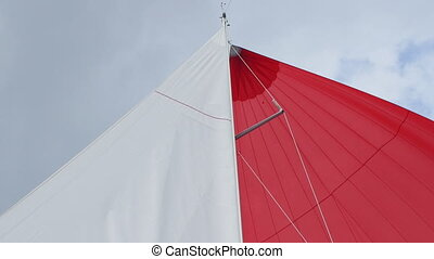 White and red sails of yachts and boats on background of...