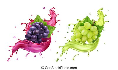 White and red wine grapes in realistic juice splash. Vector icon set
