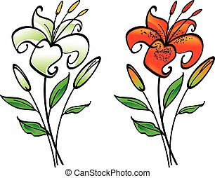 White and tiger lily