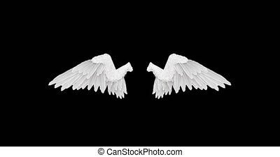 White angel wings with an alpha channel 4K