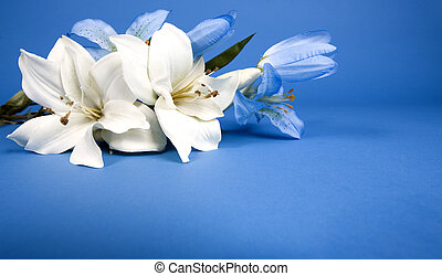 artificial lilly - white artificial lilly flower on the blue...