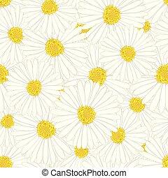 White Aster, Daisy Flower Seamless Background.