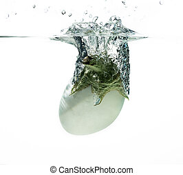 White aubergine in water splash