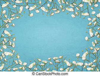 white baby's breath border - close up of baby's breath on...