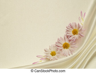 White background with asters