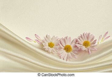 White background with daisies